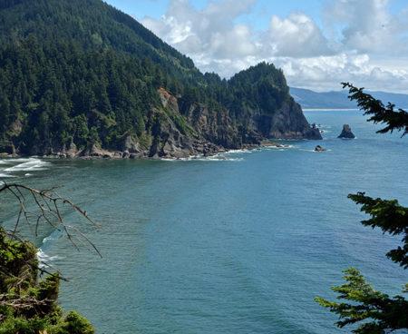 https://vintagetourbus.com/wp-content/uploads/2016/01/Oregon-Coast-trail-view-Short-Sands-2-450x368.jpg