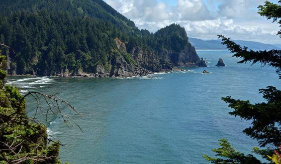 https://vintagetourbus.com/wp-content/uploads/2016/01/Oregon-Coast-trail-view-Short-Sands-2-559x327.jpg